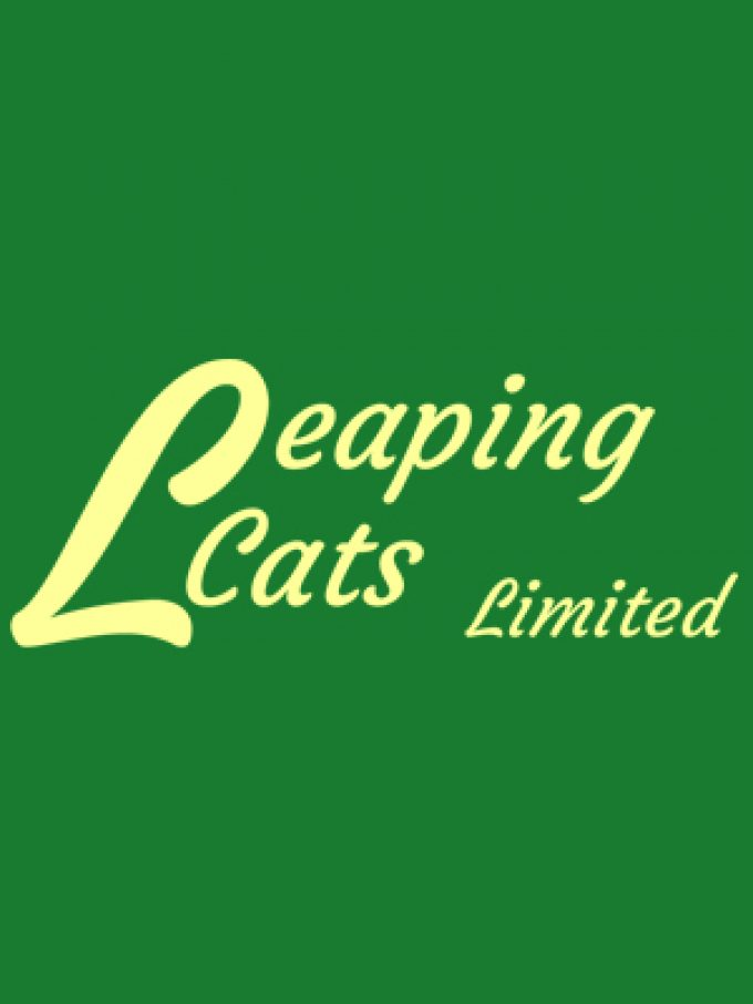 Leaping Cats Ltd.